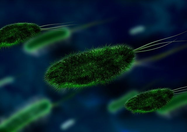 multiple-yeast-infections